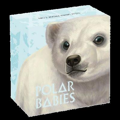"""Сребърна монета """"Полярни бебета - мече"""", външна кутия"""