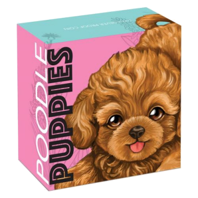 "Silver coin ""Puppies - Poodle"", outer box"