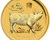 """Gold coin """"Year of the Pig"""", face"""