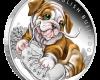 "Сребърна монета ""Кученца - Английски Булдог"", лице"
