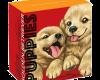 """Сребърна монета """"Кученца – Голдън ретрийвър"""", външна кутия"""