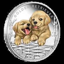 """Сребърна монета """"Кученца – Голдън ретрийвър"""", лице"""